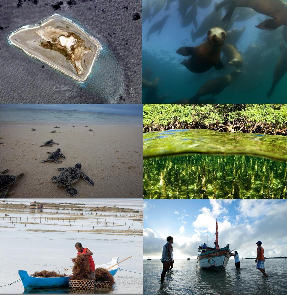 Global Ocean Health Index