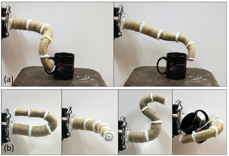 MIT Trunkbot biomimetic elephant's trunk robot
