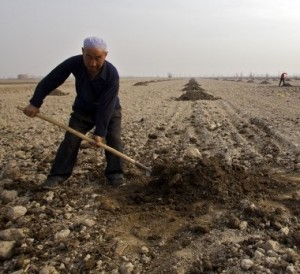 China dry field agriculture