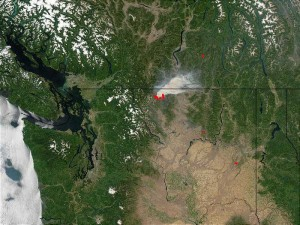 MODIS forest fire detection