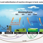 Environment Update: Nitrogen Pollution as Problematic as CO2