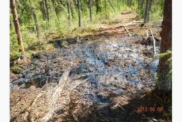 Cold Lake oil spill
