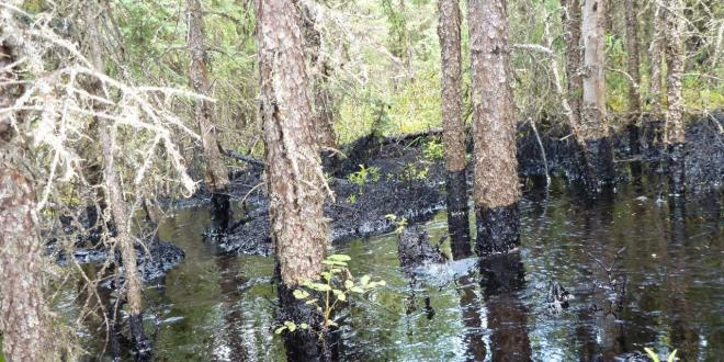 oil spills Northern Alberta