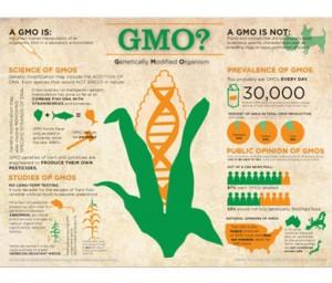 GMO-101