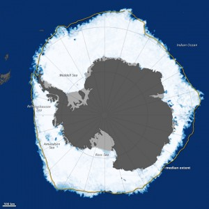 Antarctic sea ice 2013