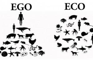 ego-eco-550x360