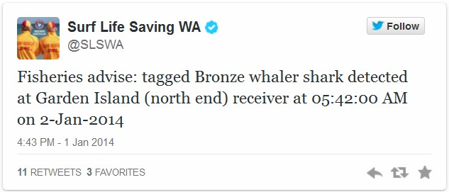 Shark Twitter alert