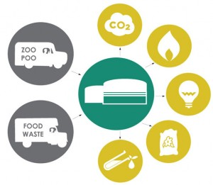 zoo poo biogas production