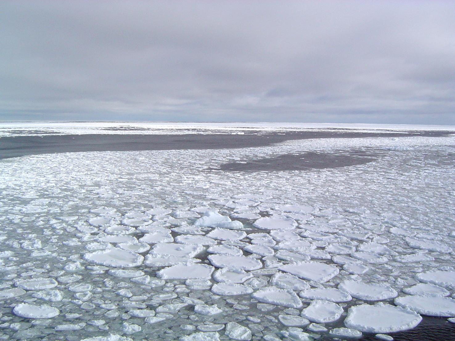 arctic sea ice 3