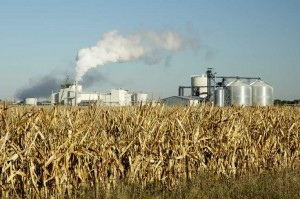 corn to ethanol