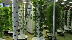 vertical_farming__48723