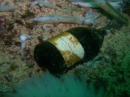 Monterey Bay plastic debris