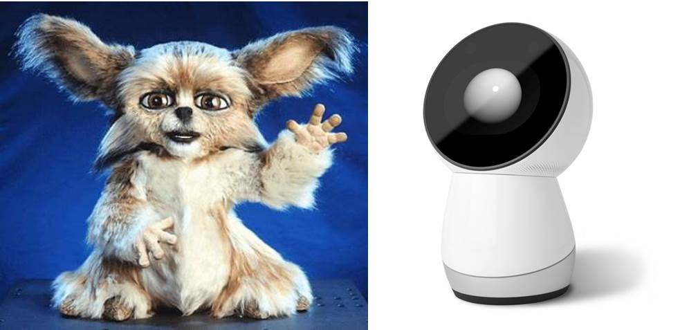 Leonardo and Jibo robots