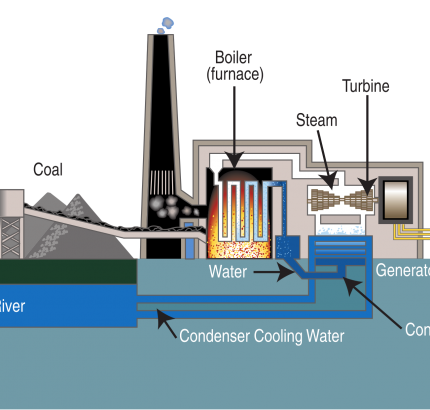 Coal-fired steam turbine power plant