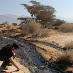 oil spill cleanup land