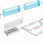 Schematic-of-UCal San Diego Fiber Optic Experiment