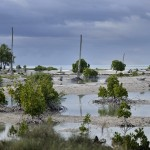 Kiribati to Begin Climate Change Migration in the Next Five Years