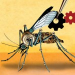 Gene drives mosquitoes