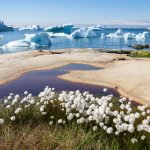 Spring Comes 26 Days Earlier in the Northern Hemisphere Than a Decade Ago