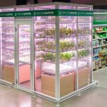 Urban Farming the New Model for Grocery Stores, Reducing Our Carbon Footprint, and Feeding Cities