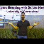 NASA Inspires University of Queensland Researchers to Accelerate Plant Breeding Starting with Wheat